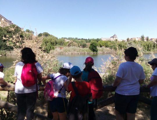 Ciclo 2 en Toledo. Día 3
